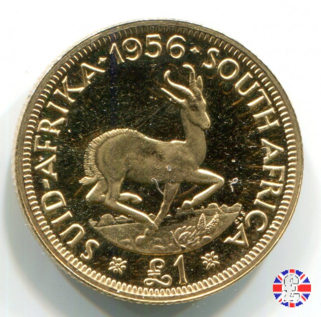 1 pound - Elizabeth II 1956 (Pretoria)